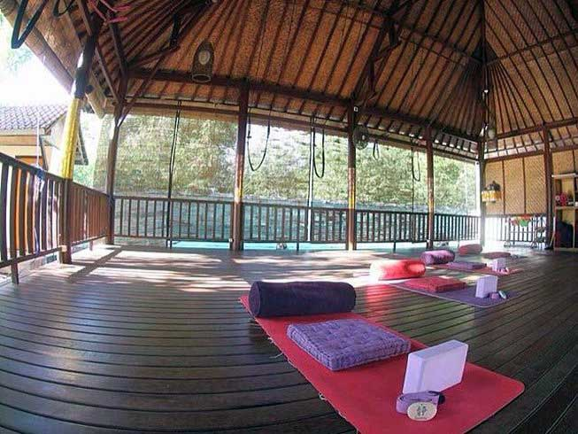 The Serenity Yoga Shala