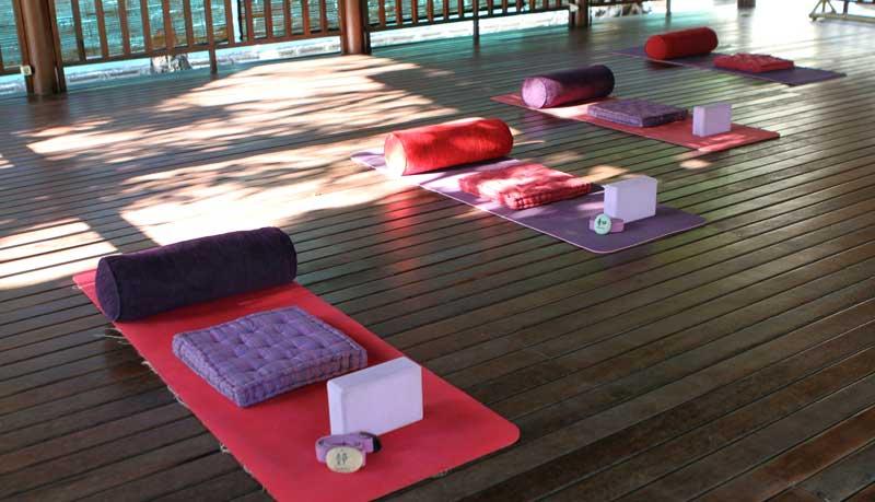 Yoga mats ready in the Shala