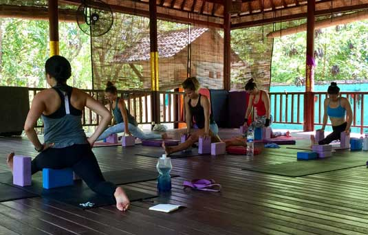 on the path to becoming a Yoga teacher